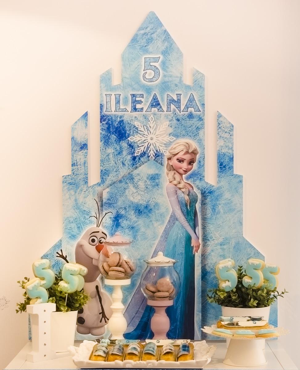 Ileana's Frozen Party