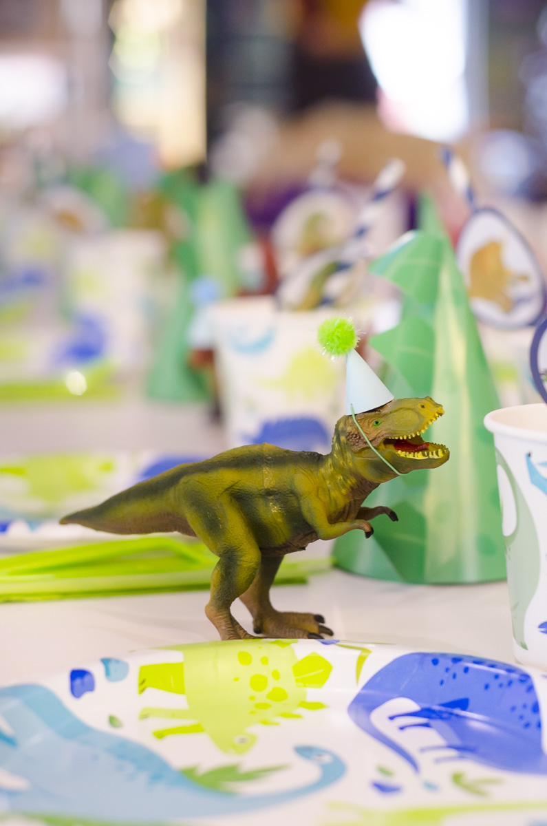 Lukas Dinosaur Party