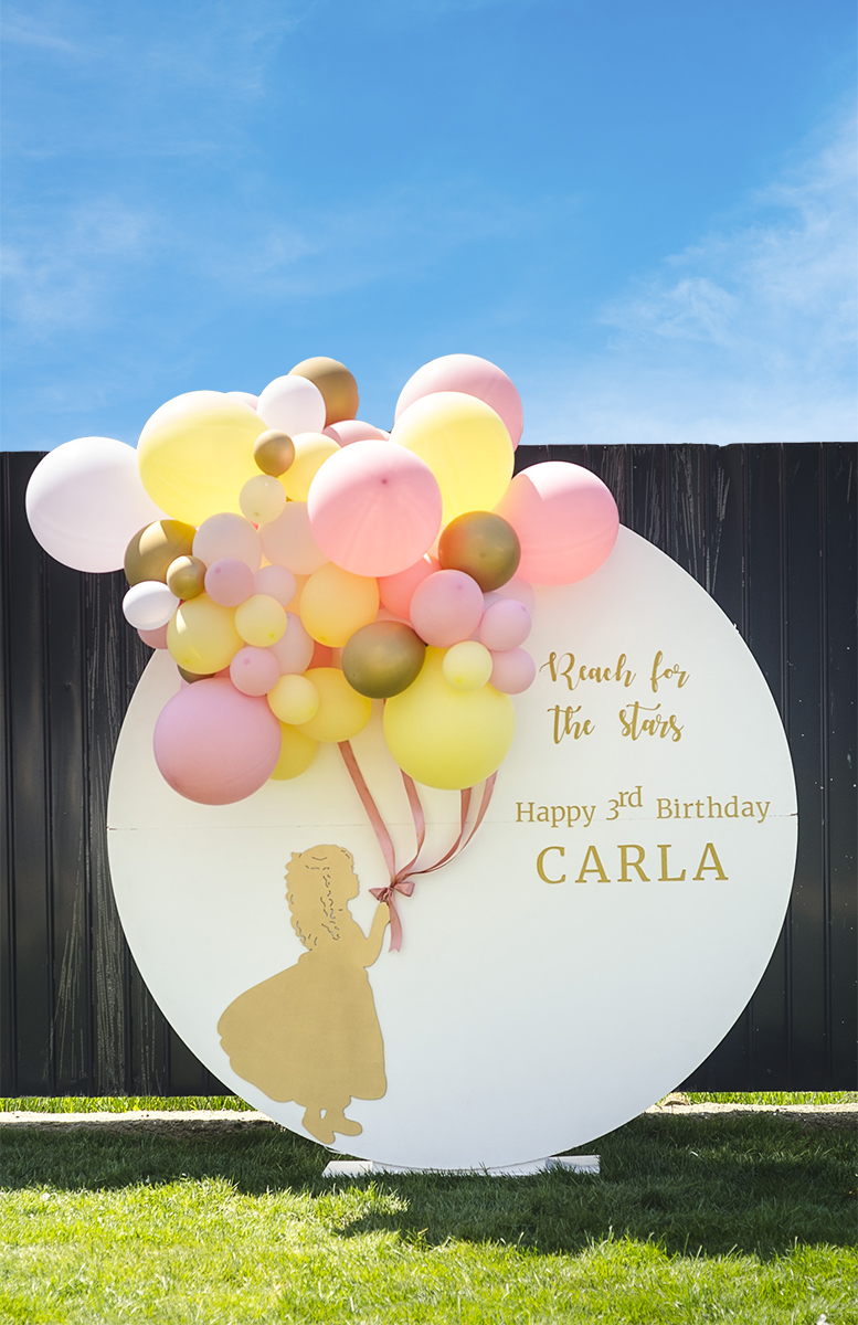 Amza & Carla's Party