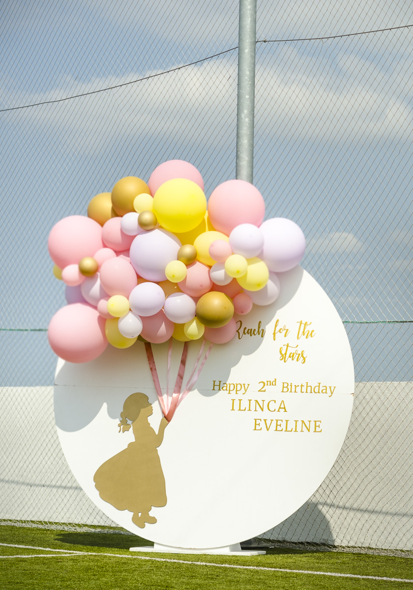 Ilinca's Party